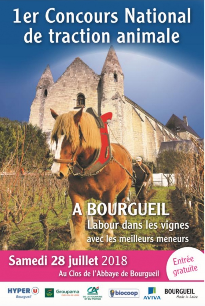 1er Concours National de Traction Animale à Bourgueil